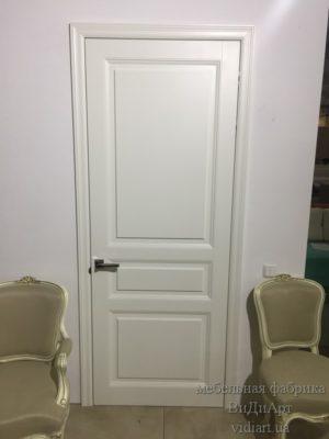 Двери - проект компании ВиДиАрт